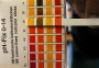 ph-test-strips1